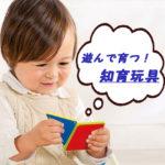 【保育士推奨!】今売れてる知育玩具~木のおもちゃ『エド・インター』~